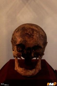 Craniul tatălui, Bolyai Farcas