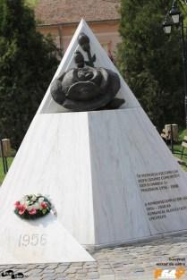 Monument ridicat de asociația In memoriam 1956