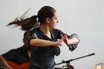 Flamenco la VinVest 2014