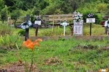 Cimitirul din Scărișoara