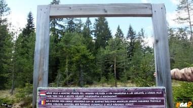 Diferența de înălțime între arbori
