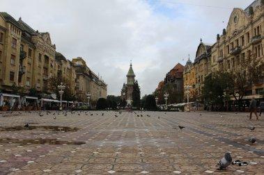 Piețe superbe în Timișoara