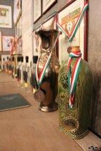 Premii, diplome, cupe și medalii