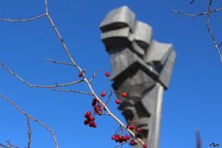 Măceșe degerate și monumentul