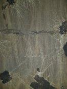 Piatră depusă pe pereții decantoarelor