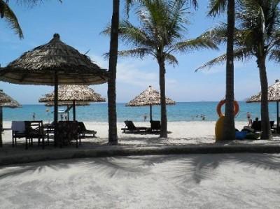 Những chiếc ô cọ giúp du khach thư giãn trên bờ biển tuyệt đẹp
