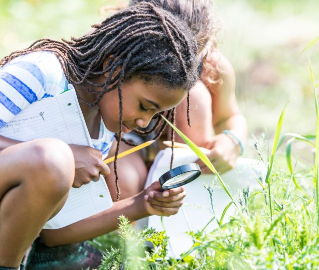 An Elementary Student Looking At Bugs With A Magnifying Glass In A Grassy Field