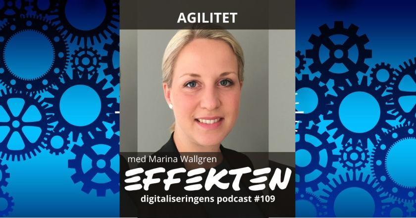 agilitet Marina Wallgren