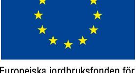 EU-flagga Europeiska jordbruksfonden