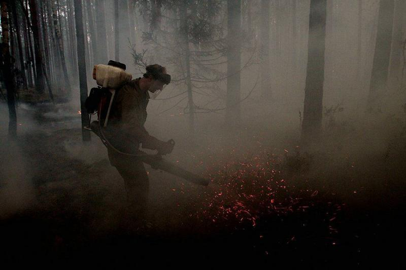 Extinguishing Wildfires 11