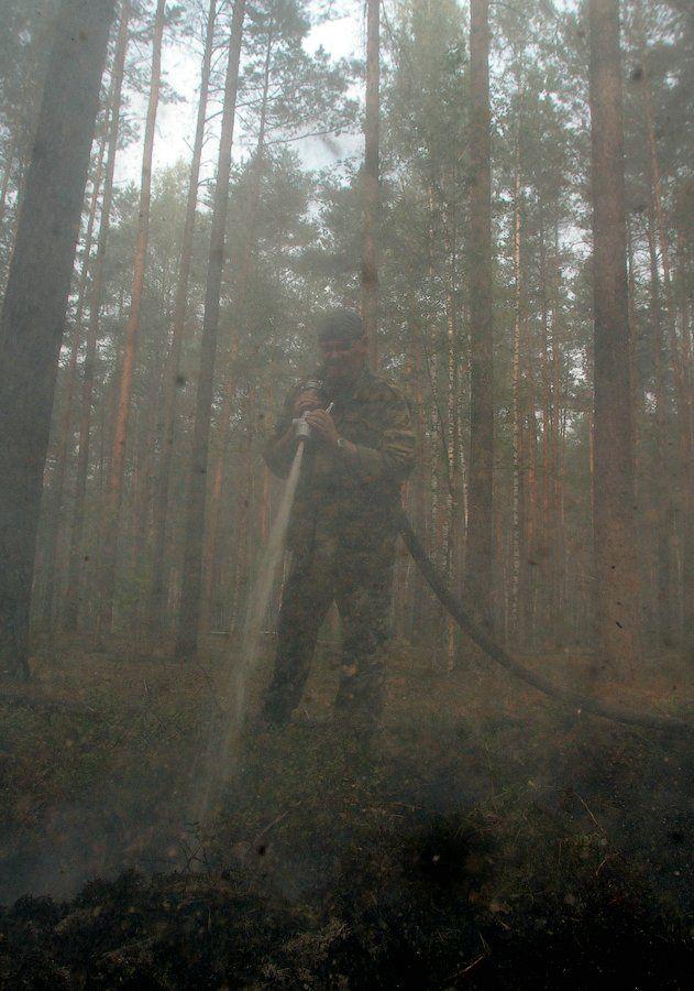 Extinguishing Wildfires 29