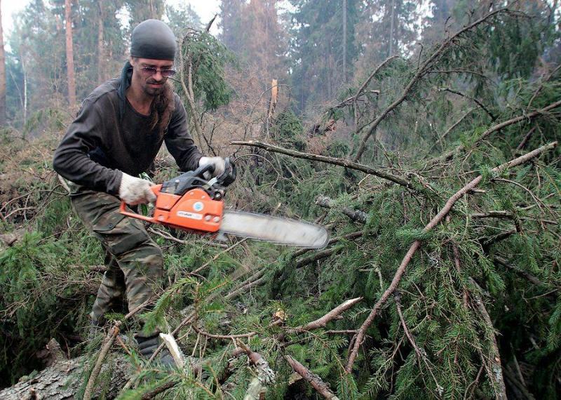 Extinguishing Wildfires 60