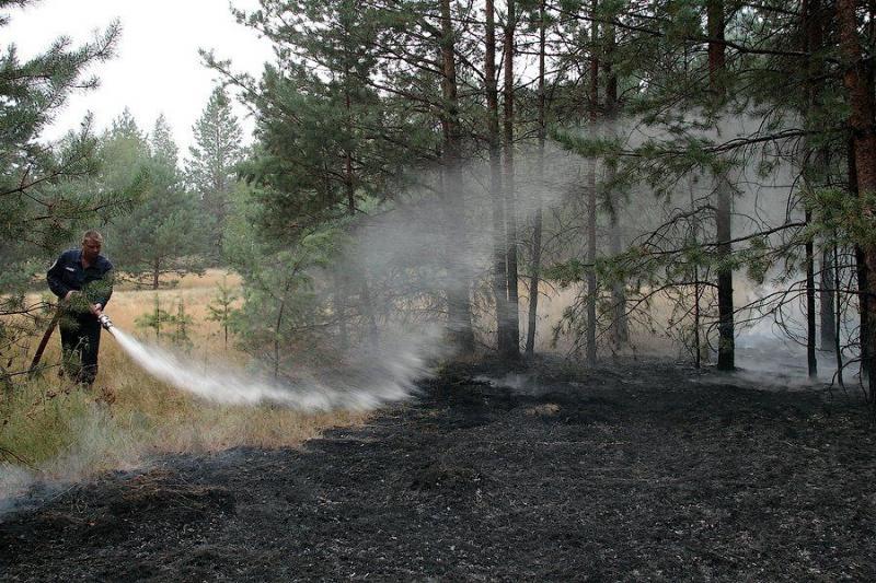 Extinguishing Wildfires 62