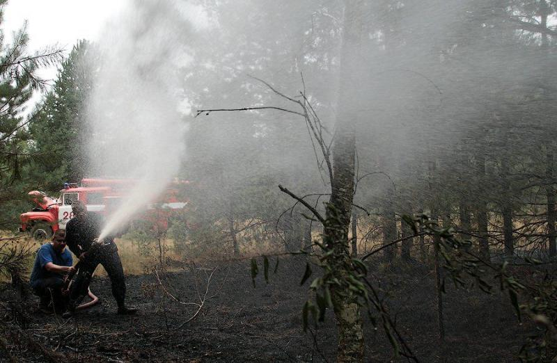 Extinguishing Wildfires 63