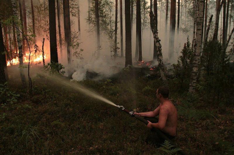 Extinguishing Wildfires 8