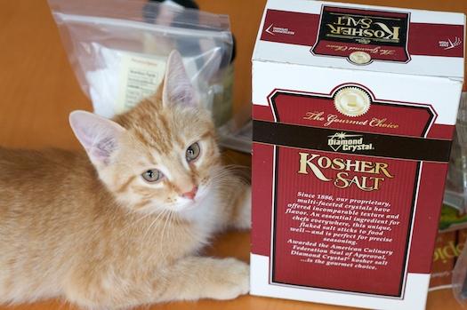Salt: Does a Kitten Good
