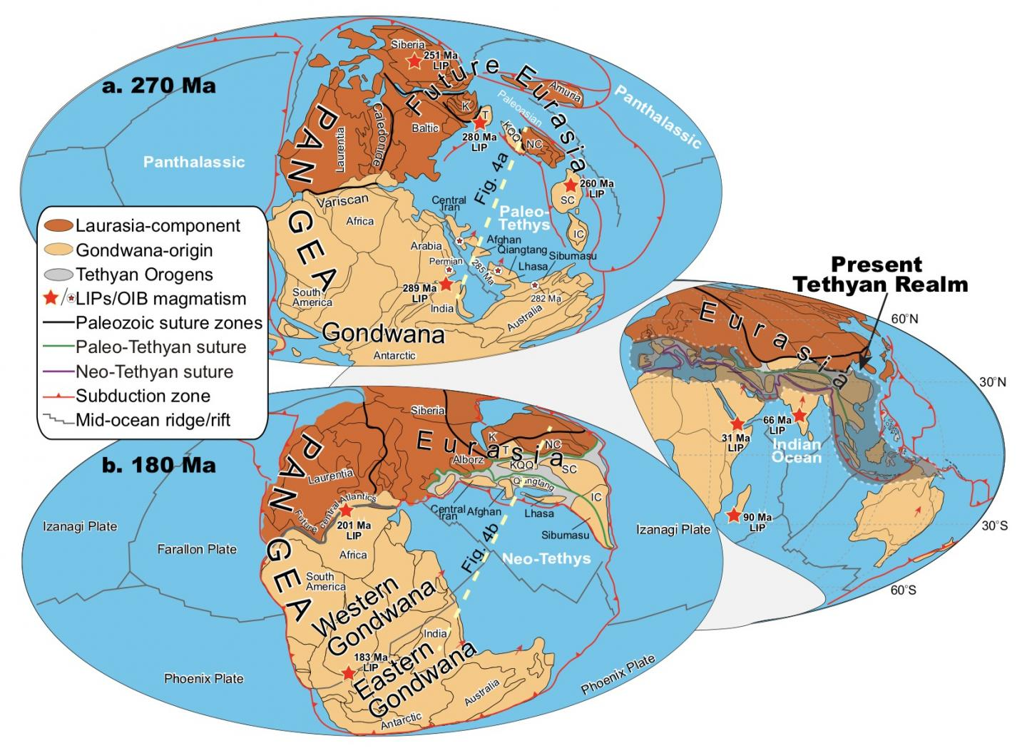 What Drives Plate Tectonics