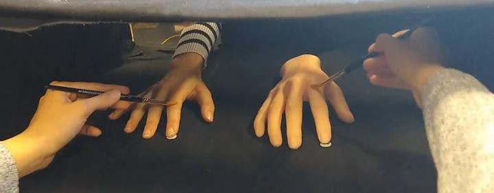 A demonstration of the Rubber Hand Illusion.  Credit: University of Sussex