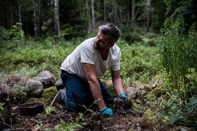 Johannes Wätterbäck gräver om Farbror Grön