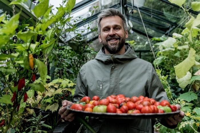 Tomater på ett fat