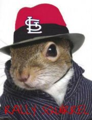 St Louis Cardinals Rally Squirrel