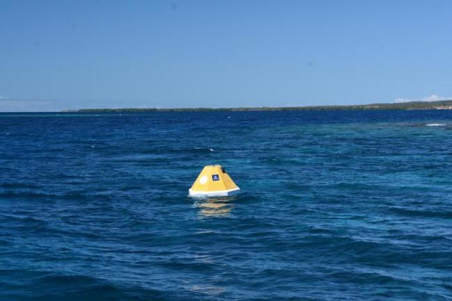 Yellow buoy in the blue ocean off the coast of Puerto Rico, land can be seen in the background