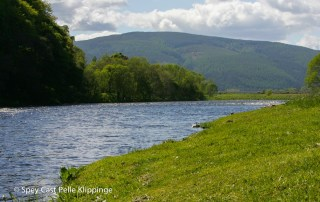 River Spey fly fishing