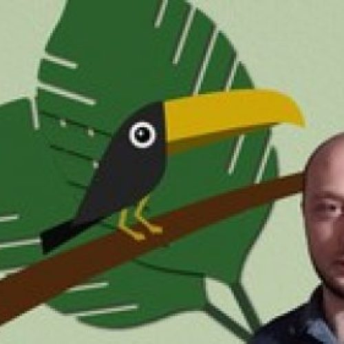 Create Toucan in Illustrator from Sketch