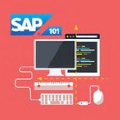 The Complete SAP S/4HANA Bootcamp 2021