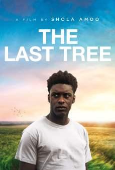 مشاهدة وتحميل فلم The Last Tree أخر شجرة اونلاين