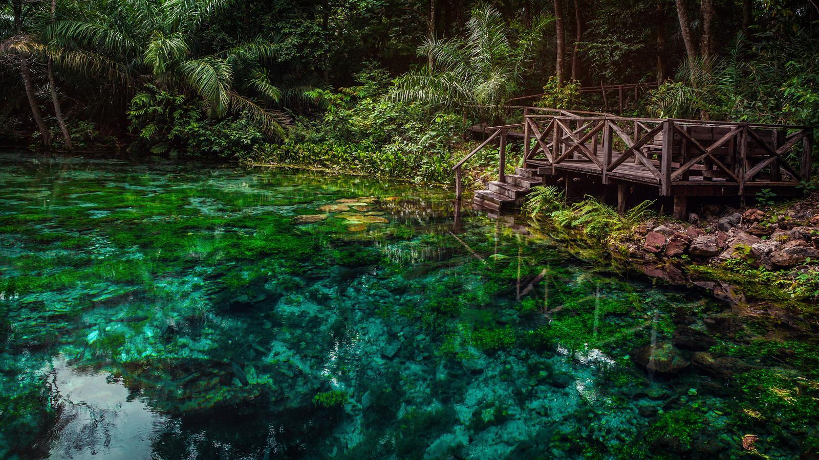 Explore Northern Brazil & Amazon In Brazil, South America