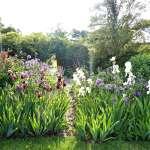 Garden Visit Flower Borders In A Colorful English Garden Tattenhall Edition Gardenista