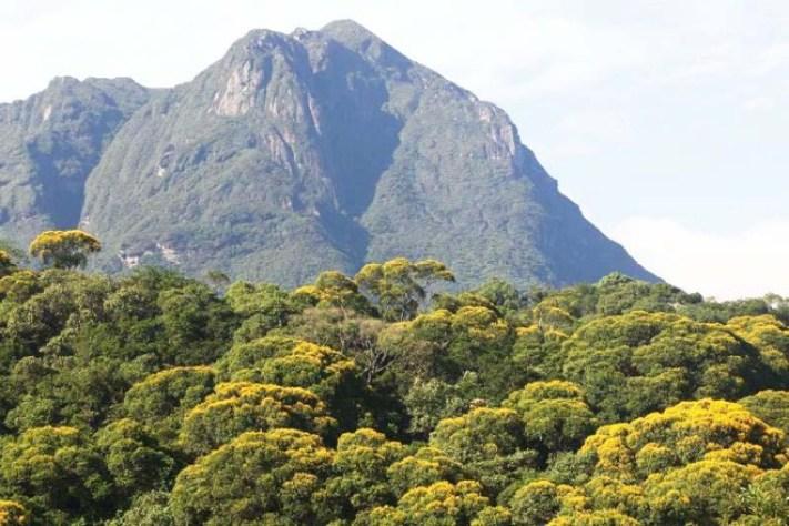 Montanhas do Paraná: conheça os pontos mais altos do estado