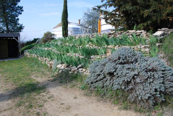 Vegetalisation De Talus Plantes Adaptees Plantation Baches