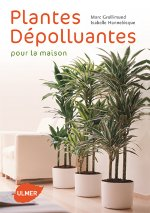 Ombre Peu Dentretien Plantes Dintrieur Increvables