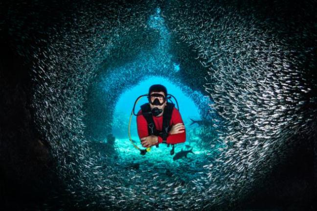 Fish tunnel