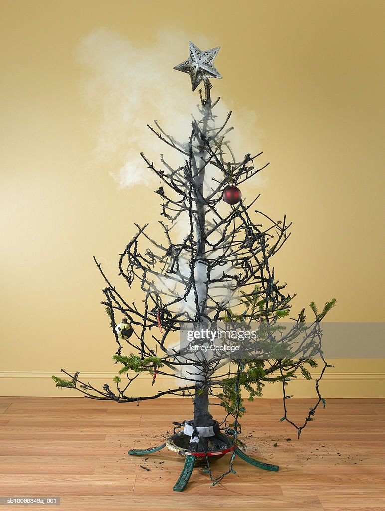 Burnt Christmas Tree With Smoke Stock Photo Getty Images