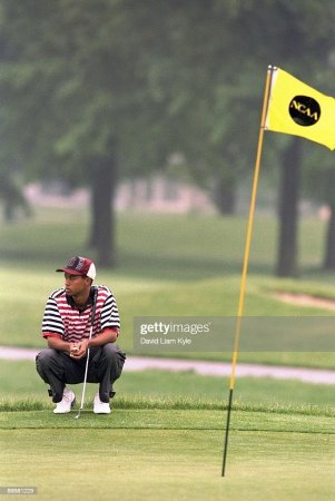 Stanford University Tiger Woods  1995 NCAA Men s Golf Championships     Stanford Tiger Woods in action  lining up putt at Ohio State University  Golf Course