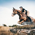 Horse And Rider Jumping Over Logs High Res Stock Photo Getty Images