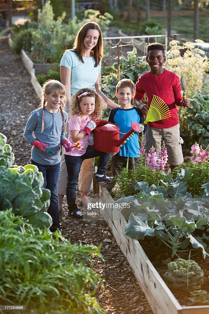 Community Garden Stock Photos And Pictures Getty Images