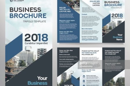 Business Brochure Template In Tri Fold Layout Vector Art   Thinkstock Business Brochure Template in Tri Fold Layout    Vector Art