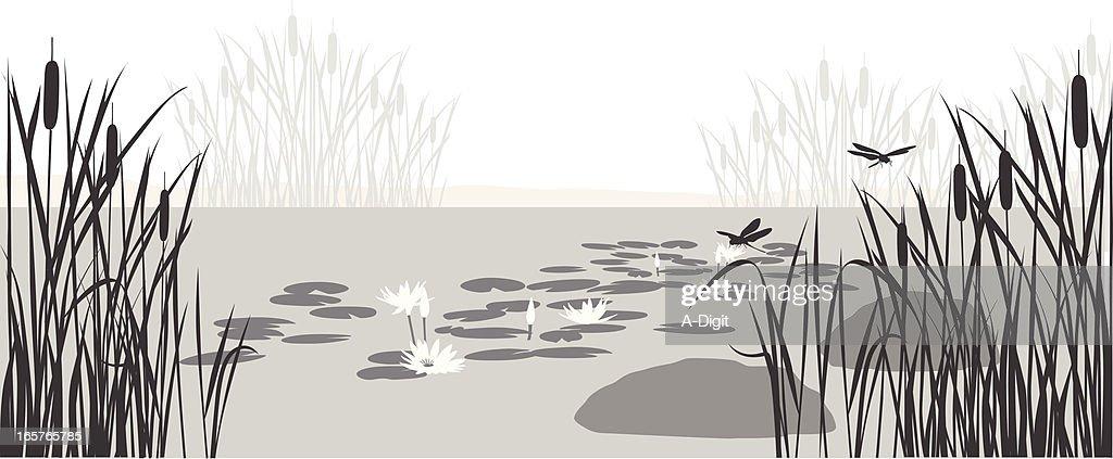 Pond Filter Design