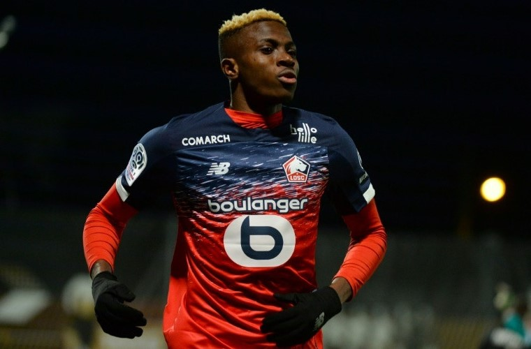 Departure Of Victor Osimhen Confirmed - Lille Coach