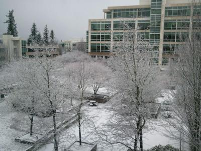 photo microsoft office redmond washington. Campus Pictures Microsoft Office Outstanding Redmond Wa Washington Photo U
