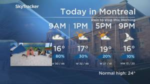 Global News Morning weather forecast: Tuesday June 11, 2019