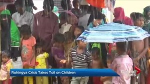 Rohingya crisis takes toll on children
