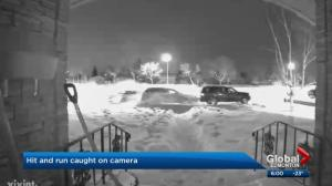 Doorbell camera shows damaging hit-and-run crash in Edmonton