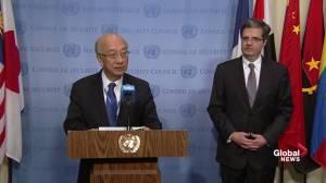 UN Security Council condemns 'barbaric' Nice attacks