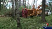 Play video: Experts say Canada's forested communities need to do more to protect themselves from wildfires