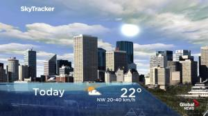 Edmonton early morning weather forecast: Tuesday, June 11, 2019